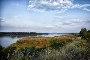 The Donau by rhipster