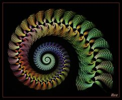 Unspiral by Rozrr by Rozrr