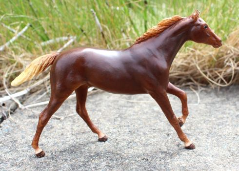 Calidi - Cm Breyer PP/LB Thoroughbred by lupagreenwolf