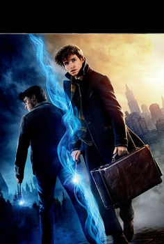 HARRY POTTER and Fantastic Beasts textless by mintmovi3