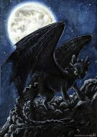 Night Fury by taiyakitsune