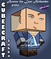 Cubeecraft of Sokka Avatar the Last Airbender 3D by SKGaleana