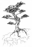 Bonsai by JessicaMDouglas
