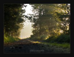 at the end of the road by IzabelaMilczarek