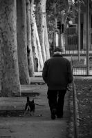 follow the age by EricLoConte