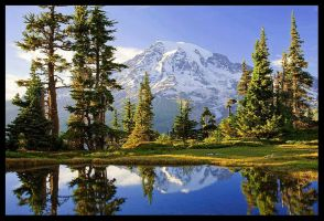 Alpine Reflection by hikester
