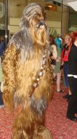 Cewbacca Youmacon 2010 by Chaosgamer137