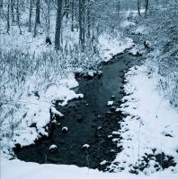 Snow creek by harrietsfriend