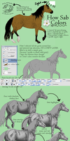 Coloring walkthrough by Sabriel-TS