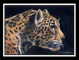 ACEO Jaguar by photospider