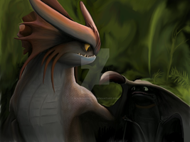 Toothless and Cloudjumper by BlazeOfPhoenix