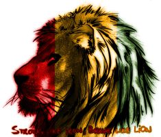 Lion of zion by D3ssY