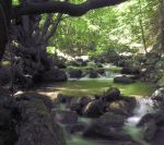 Flowing Creek 111099 by StockProject1