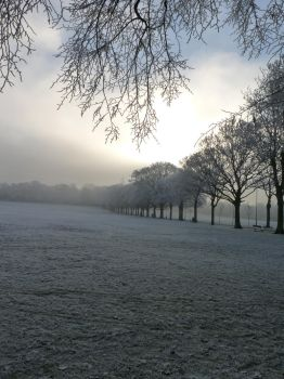 Winter in Leicester X by whiskyboy