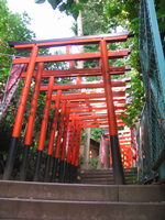 Torii Loom Above by PacificPikachu
