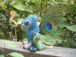 Peacock Gryphon by DLChart