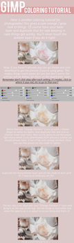 Gimp Channel Mixer Coloring Tutorial by CRollins
