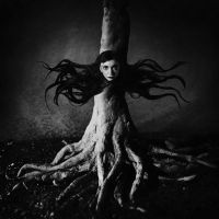 L'arbre by Feebrile