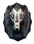 Winged Skull Plaque, 2 by DellamorteCo