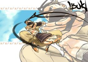 IBUKI COLOR by FF69