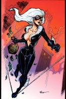 Black Cat gets away by jFury