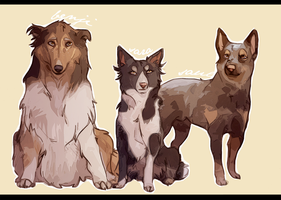 -PS Dogs- by HennaLucas