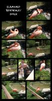 Flamingo Stock/Reference by Oddstuffs