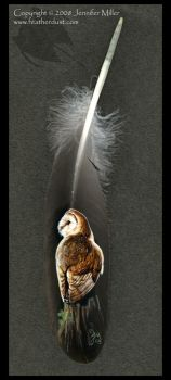 Barn Owl painted feather by Nambroth