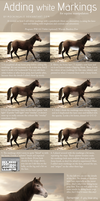 Adding Markings Tutorial by mockingale