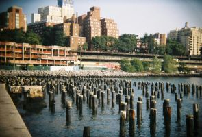 Brooklyn in Color: Sticks 'n' Stones, II by neuroplasticcreative