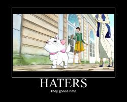 Haters gonna hate by alucardserasfangirl