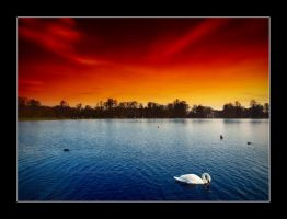 Swan song by UtopiaIsBanished