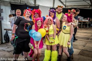 The bronies group by Princess-Amy