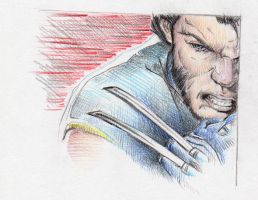 ultimate-wolverine by Nachan