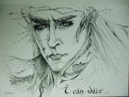 I CAN WAIT : Lee Pace / Thranduil by kty-razza
