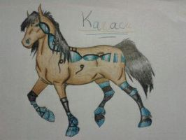 Karaca - Gift for ArtOfFreedom by marije94