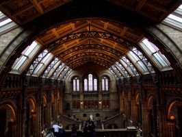 The Natural History Museum by KayTeez