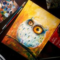 owl by bemain