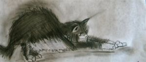 Cat Stretching by NathanielBart
