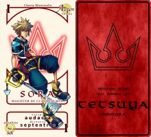 Sora Pactio Card by Silverwind91
