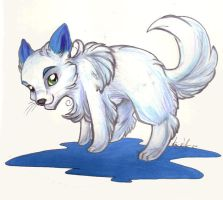 arctic fox kit in Real Media by lizspit