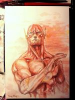 WIP - The Flash - Watercolor Study by dreamflux1