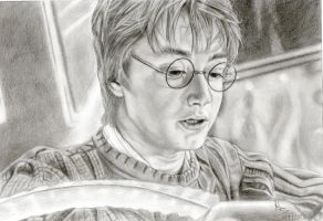 My name is Harry Potter. by bartosanda