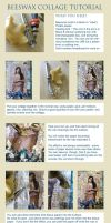 Beeswax Collage Tutorial by hogret
