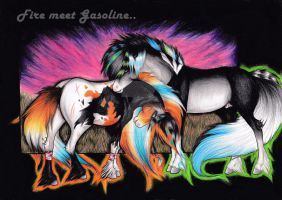 Fire meet Gasoline by viviwonda