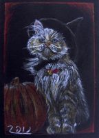 halloween cat atc by nupharHALL