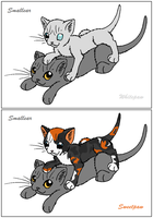 ThC - Smallear's Apprentices by WildpathOfShadowClan