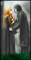 Snape and Lily - DH spoilers by sessy