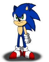 Sonic the Hedgehog is Upset by Sonicdude645