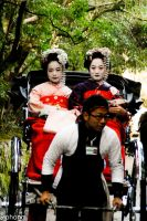 Geisha at Arashiyama by siphong